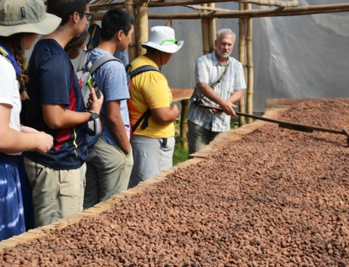 Shawn Askinosie NASFA Interview: Creating Cultural Exchange Through Chocolate